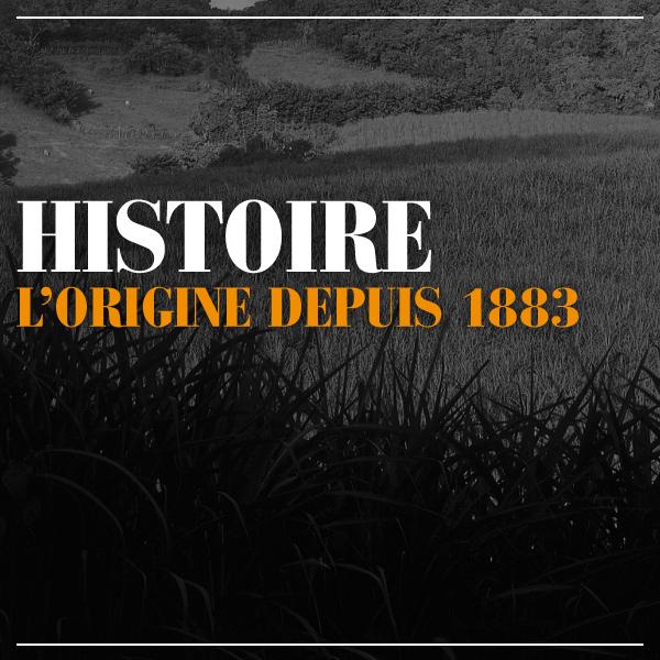 L'histoire d'HSE