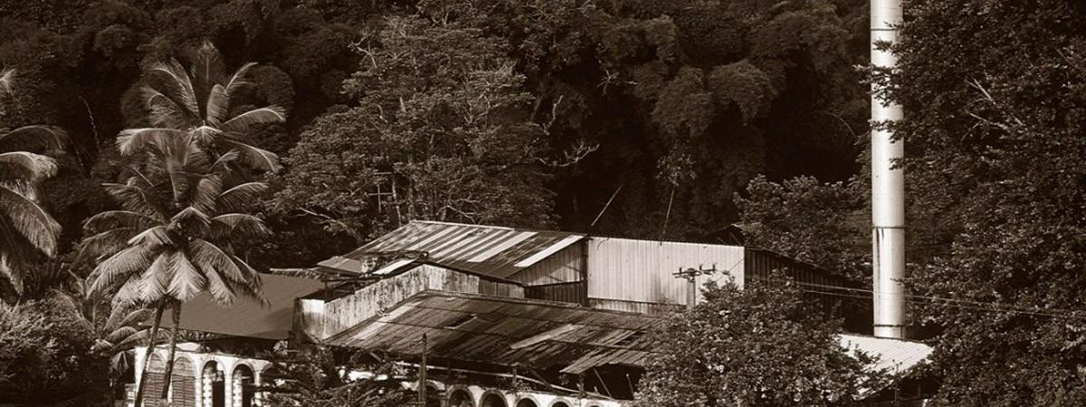 Martinique. Agriculture et industrie.